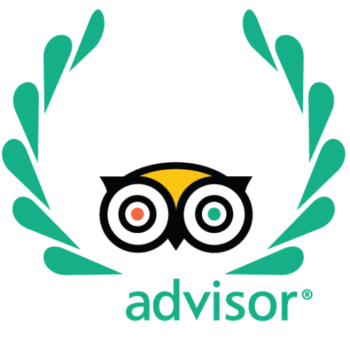 Explorenique : 2019 Travelers' Choice Award | Top 10 Experiences - Thailand